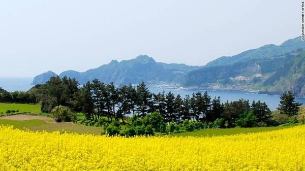 Ulleung-Do, Hàn Quốc Ulleung nổi tiếng nhất là ẩm thực truyền thống, du khách tới đây có cơ hội ăn hải sản tươi sống, thịt bò organic nướng từ những con bò nuôi ngay trên đảo, và cơm sanchae bibimbap.
