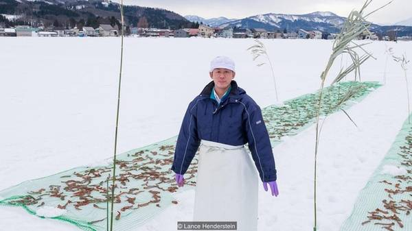Những người nông dân đánh dấu khu vực bảo quản ớt bằng các ngọn tre nhỏ. Kể cả khi tuyết rơi dày phủ lên toàn bộ khu vực thì người dân vẫn nhận ra dễ dàng chỗ họ để ớt.
