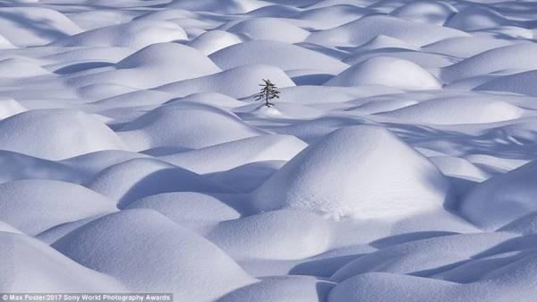 Tuyết trắng bao phủ các ngọn đồi nhỏ