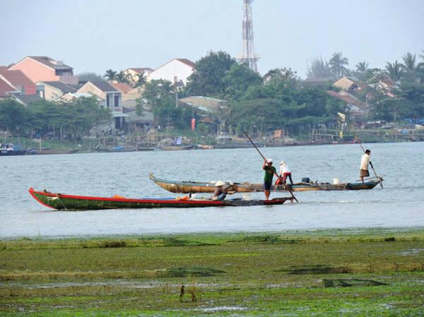 Khúc sông Hoài trở nên rộn ràng khi bước vào mùa cào hến tháng 2, tháng 3 - Ảnh: THANH LY