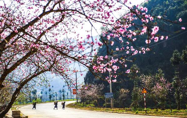 Con đường quốc lộ dẫn qua thị trấn Sủng Là đẹp như bức tranh.