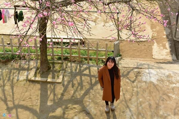 Bạn Hoàng Thị Mai, một khách du lịch, cho biết ban đầu chỉ định đi Y Tý để ngắm mây. Nhưng đến nơi, cô không ngờ là hoa đào lại nở đẹp đến thế. Và việc đi ngắm hoa đào trở thành mục đích chính trong chuyến đi.