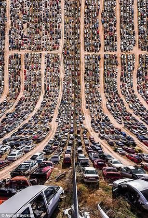 Những chiếc xe xếp hàng dài ở Mexico