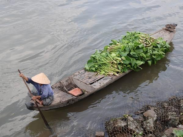 Ảnh: Trịnh Thanh Tùng
