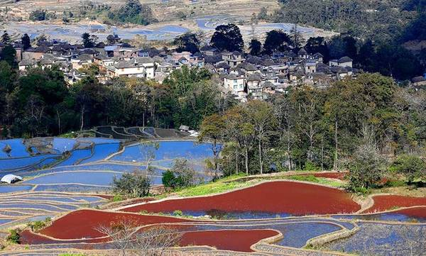 Cảnh đẹp có sự hòa quyện của những dãy núi tự nhiên và các thửa ruộng bậc thang nhân tạo. Mỗi mùa nước đổ lại tạo nên những sắc màu khác nhau rất sống động.