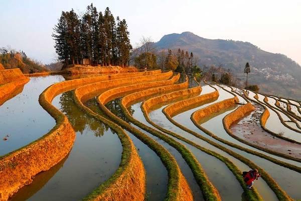 Khoảng tháng 2, 3 các thửa ruộng đều đã được thu hoạch từ lâu và trơ lại những bờ đất cùng mặt ruộng ngập nước. Khi đó người Hà Nhì lại tiếp tục chu kỳ trồng trọt của một năm mới.