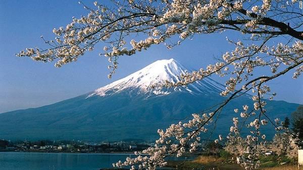 Núi Phú Sĩ: Xung quanh ngọn núi lửa biểu tượng của Nhật Bản có 5 hồ - địa điểm hoàn hảo để ngắm hoa anh đào. Khu vực này thường rất đông đúc do khá phổ biến, nhưng du khách có nhiều góc nhìn khác nhau để lựa chọn.