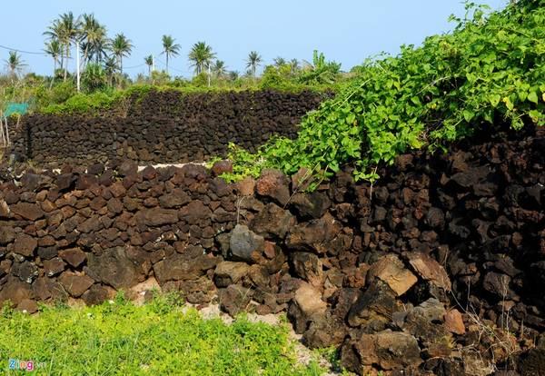 Do địa hình triền đồi nhấp nhô, nông dân đắp bờ đá trầm tích núi lửa cao hơn 1,5 m, có đoạn dài hơn 500 m tạo nên tường lũy vững chãi quanh huyện đảo tiền tiêu.