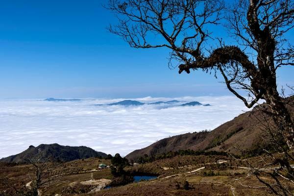 Đỉnh Chiêu Lầu Thi cao 2.402 m nằm ở xã Hồ Thầu, cách thị trấn Vinh Quang (huyện Hoàng Su Phì, tỉnh Hà Giang) 40 km.