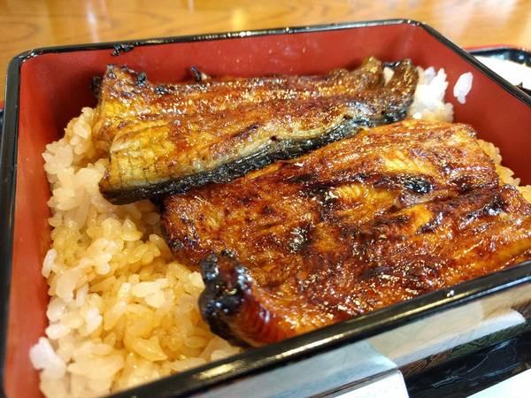 Cùng với cá koi, vùng Ojiya còn nổi tiếng với rượu sake, các món ăn truyền thống Nhật Bản như các món bánh gạo, gạo (được đánh giá là gạo ngon nhất Nhật Bản), anadon (cơm lươn)...