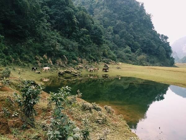 Điểm đến hàng đầu là thác Nặm Trá, với dòng nước xiết giữa những ghềnh đá nhấp nhô.