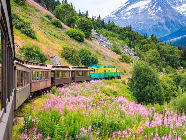 Nếu bạn không thích đi tàu, hãy bắt một chuyến xe lửa đi tuyến đường sắt White Pass và Yulon Rout Railroad. Tuyến đường này có tuổi thọ hơn 100 năm, uốn lượn qua các núi đồi nối liền thị trấn nhỏ Skagway với Yokon, Canada.