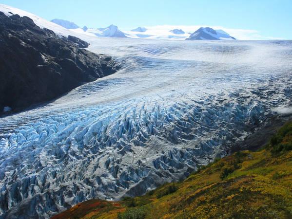 Nếu đã đến Fjords rồi thì tuyệt đối không được bỏ lỡ dịp khám phá dòng sông băng hùng vĩ Exit Glacier.