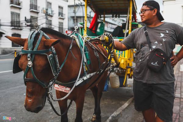 Sau khi tham quan pháo đài Santiago, du khách có thể du ngoạn các công trình cổ kính đậm nét châu Âu khác tại khu thành cổ Intramuros bằng xe ngựa kéo...