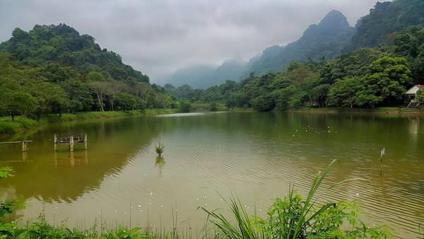 Thiên nhiên hữu tình ở Vườn quốc gia Cúc Phương.