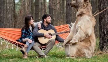 Trong những bức ảnh đẹp như cổ tích, cặp đôi ngồi trên võng và hát cùng chú gấu Stepan.