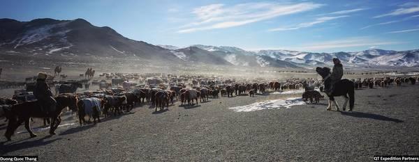 Thắng và 18 thành viên trong đoàn tham gia chuyến di cư với bộ lạc Kazakh sống cùng đại bàng ở cực Tây và lên rừng taiga đi tìm bộ lạc Tsataan chăn nuôi tuần lộc ở khu vực phía bắc vùng giáp biên giới Nga. Mông Cổ là giấc mơ không thể nào quên đối với những người từng đặt chân đến.