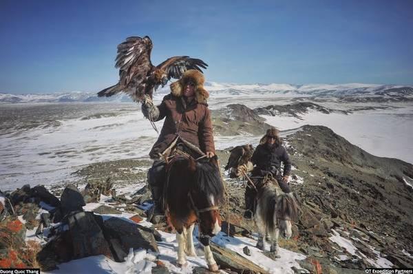 Đi săn thú với đại bàng là những cuộc đi săn truyền thống của bộ tộc người Kazakh trong mùa đông. Họ thường đi theo nhóm, cưỡi ngựa lên những vách đá, ngọn núi cao có tầm quan sát tốt. Sau khi phát hiện con mồi, đại bàng được mở mắt và sẵn sàng nghe lệnh bay xuống bắt mồi. Đại bàng vàng có vận tốc bay 200 km/h. Với móng vuốt sắc nhọn, nó có thể sà xuống quắp cáo, thỏ, thậm chí là sói.