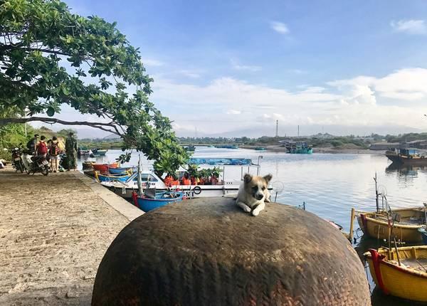 Bến tàu ở Liên Hương. Ảnh: Kim Lộc