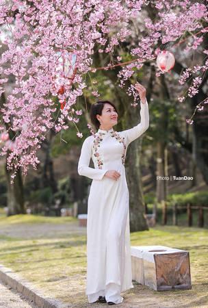 Thời tiết tại đây ấm áp hơn ở Tokyo nên du khách có thể thoải mái ăn mặc diện chụp hình với hoa. Nhiều du khách Việt cũng tới Nhật Bản mùa này để chiêm ngưỡng hoa anh đào.