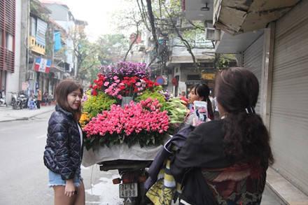 Loài hoa báo hè này còn thu hút khách du lịch tranh thủ lưu giữ cho mình những bức ảnh tươi mới qua màu sắc tươi mới và hương thơm dịu ngọt.