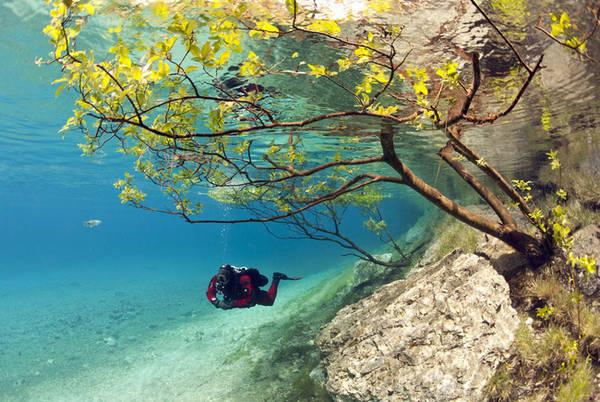 11. Hàng năm, nước ở vùng Hồ Xanh trong công viên Tragoess của Áo lại dâng cao, nhấn chìm mọi thứ xung quanh khiến cây cối, lối đi, ghế đá và những cây cầu ngập trong độ sâu đến 12m nước. Vì thế, khu rừng nằm trong công viên bỗng trở thành một khu rừng trong nước chỉ có các thợ lặn chuyên nghiệp mới có thể đến được.
