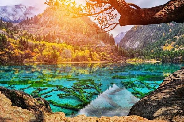 2. Công viên Quốc gia Cửu Trại Câu ở Tứ Xuyên, Trung Quốc là tập hợp của những khu rừng xanh mát bao quanh các hồ nước xanh màu ngọc bích. Cứ mỗi mùa thu, khi hồ nước trong veo phản chiếu tấm thảm lá rừng đang chuyển dần từ màu vàng sang màu đỏ, hàng triệu du khách lại đổ về đây để chiêm ngưỡng vẻ đẹp như chỉ có ở chốn thần tiên này.