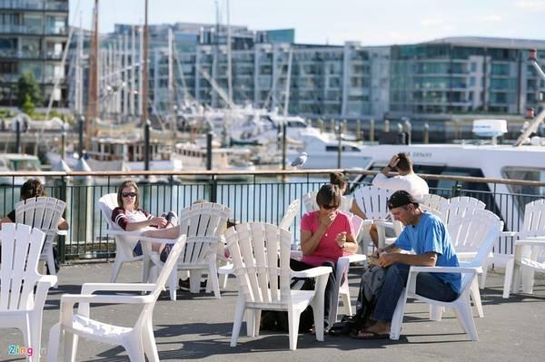 Cảng Waitemata và Hauraki là hai điểm giải trí du lịch nổi tiếng của New Zealand. Thời gian phù hợp nhất để khám phá là từ tháng 11 đến tháng 5, với thời tiết đẹp, trời xanh, ít mây và nắng vàng nhẹ.