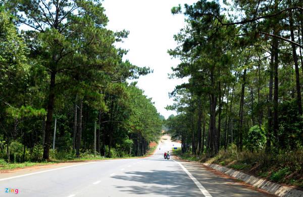 Vùng du lịch sinh thái quốc gia Măng Đen, huyện KonPlông (Kon Tum) từ lâu được du khách ví là thiên đường nghỉ dưỡng. Từ trung tâm TP Kon Tum, du khách có thể đi ôtô hoặc xe máy đi trên quốc lộ 24 về phía đông bắc 54 km.