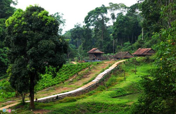 Huyện KonPlông có hơn 6.500 hộ dân, chủ yếu là người dân tộc Xê đăng, Mơ Nâm, Ka Dong, Hre - chiếm trên 80% dân số địa phương này, với nhiều nét văn hóa đặc trưng như các loại nhạc cụ dân gian lâu đời như sáo dọc, trống, chiêng, cồng, tì, ống gõ, giàn ống hoạt động nhờ sức nước; trang phục đặc sắc của đồng bào và văn hóa kiến trúc nhà rông, nhà dài... gắn với không gian núi rừng thiên nhiên hoang dã.