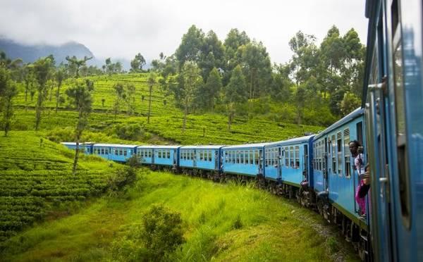 Sri Lanka: từ Kandy tới Ella Khởi đầu từ Kandy, tàu hỏa tới Ella sẽ chạy qua những đồn điền trà và lên xuống nhiều ngọn đồi để tới một ga hẻo lánh ở giữa vùng Hill Country. Chuyến tàu này kéo dài gần 7 tiếng. Quy định trên tàu ở Sri Lanka khá thoải mái nên bạn sẽ thấy hành khách ngồi ở cửa ra vào để mở, chân vắt vẻo ra ngoài đón nắng mỗi khi tàu chạy qua đồi.