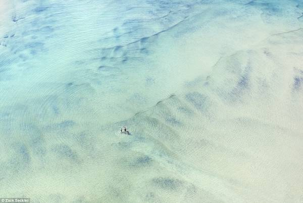 Những bức ảnh đem lại cho người xem cảm nhận mới về thiên nhiên tươi đẹp xung quanh.