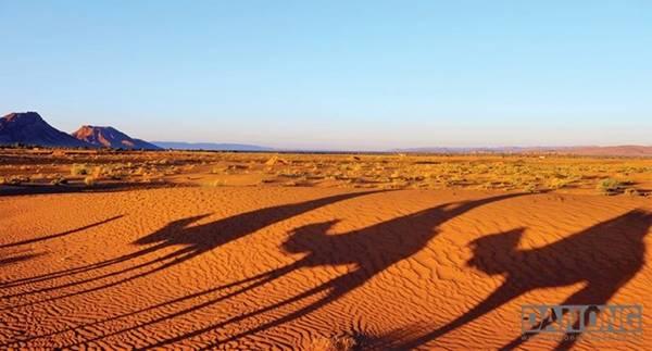 Biển cát mênh mông Sahara.
