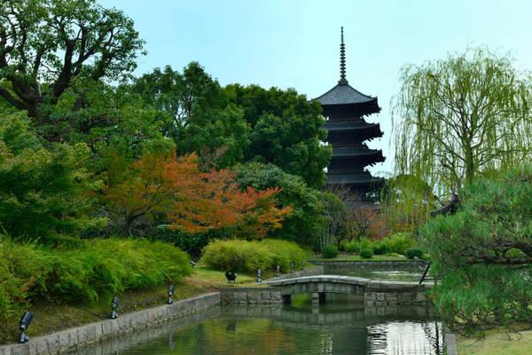 Mua sắm tại chợ ngoài trời cổ nhất Nhật Bản bên trong đền Đông Tự: Đền Đông Tự nằm ngay phía nam ga Kyoto, thành lập năm 796, là cửa ngõ vào cố đô của Nhật Bản. Địa điểm này cũng là một trong 17 di sản thế giới được UNESCO công nhận tại Kyoto, đồng thời sở hữu ngôi chùa 5 tầng cao nhất Nhật Bản với độ cao 57 m.