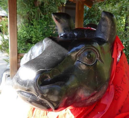 Hai con bò ở lối vào đền thờ có đầu và lưng sáng bóng vì những người hy vọng vượt qua kỳ thi đều xoa vào đó. Đây cũng là địa điểm đẹp nhất để ngắm hoa mận và tham gia lễ hội mơ từ ngày 25/2 đến hết tháng 3. Ngày 25 hàng tháng, phiên chợ ngoài trời nổi tiếng Tenjin-san được tổ chức bên ngoài đền thờ từ 6-21h