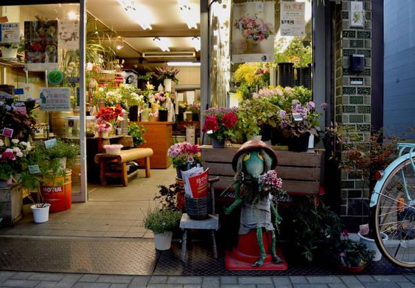Tìm những con quái vật trên đường Yokai: Yokai là một phố mua sắm kiểu cũ. Chủ các cửa hiệu và nhà hàng tại đây tạo ra yokai - những con quái vật siêu nhiên xuất hiện trong truyện cổ Nhật Bản - để bảo vệ trước cửa hàng. Một số yokai được điêu khắc cẩn thận, một số làm từ vật liệu tái chế và vải vụn, nhưng chúng đều có tâm hồn riêng.