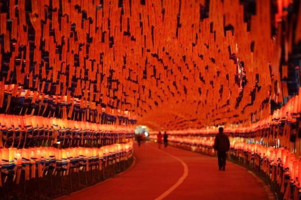10. Lễ hội đèn lồng Jinju: Tháng 10 hàng năm, Jinju (tỉnh Gyeongnam) biến thành thành phố của ánh sáng khi hàng nghìn chiếc đèn lồng trôi dọc sông Namgan. Lễ hội đèn lồng lớn nhất Hàn Quốc được coi là dịp để tưởng niệm những người đã thiệt mạng trong cuộc chiến tranh Hàn Quốc - Nhật Bản trước đây. Ảnh: Blogspot.