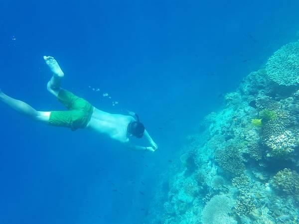 Lặn ngắm san hô ở Mantiloc Island.