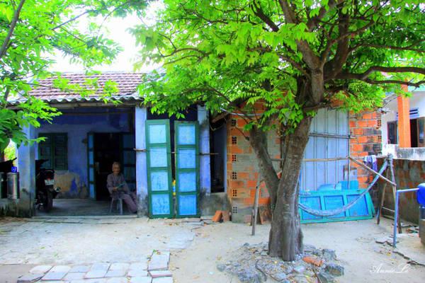 Ngôi nhà đơn sơ dưới bóng cây xanh mát.