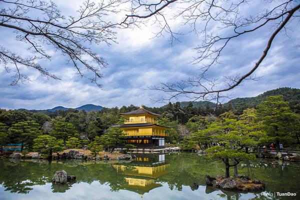 Chùa Vàng được xây dựng giữa một hồ nước lớn, xung quanh có nhiều cây xanh bao phủ khiến không gian trở nên huyền ảo, như chốn bồng lai tiên cảnh. Hình ảnh phản chiếu của chùa vàng lấp lánh dưới hồ nước, bao quanh là những hòn non bộ và những tán cây khiến du khách thích thú, trầm trồ khi đến đây.