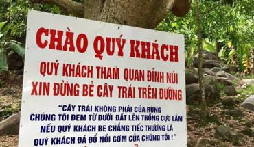 nguoi-dan-nui-ba-den-buc-xuc-vi-du-khach-pha-cay-hai-trai-ivivu-1