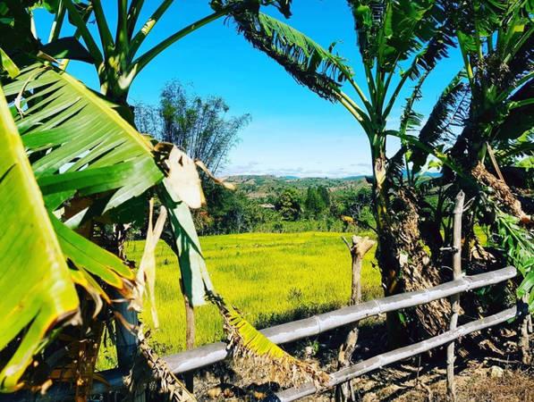 Làng K'Tu là làng văn hóa cổ nhất tại tỉnh Kon Tum, lưu giữ nét đẹp nguyên sơ của núi non hùng vĩ, con người Tây Nguyên mộc mạc. Làng K'Tu hàng năm vẫn thu hút nhiều du khách yêu thích khám phá. Ảnh: Aliceaumont/Instagram.