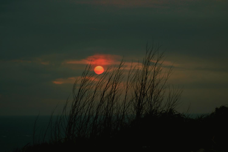 Mặt trời mọc sau đám cỏ khô, mây mù che khuất cả vùng trời.