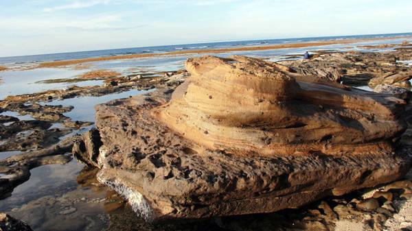 Một tảng đá núi lửa trông như thạch nhũ nằm trơ trọi giữa bãi biển - Ảnh: Trần Mai