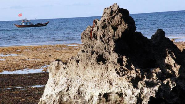 Sóng nước, rong rêu và đá núi hiền hòa bên nhau hàng triệu năm ở Hang Câu - Ảnh: Trần Mai