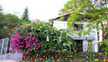 4-homestay-cho-du-khach-doi-gio-o-ha-long-ivivu-1
