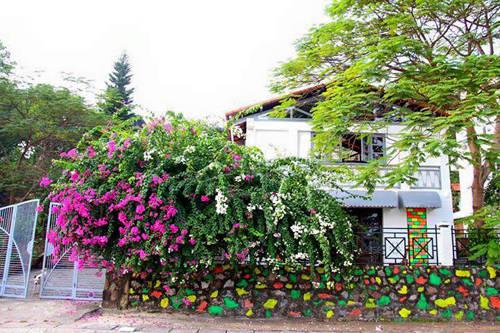 Homestay nằm ở phường Tuần Châu, TP Hạ Long.