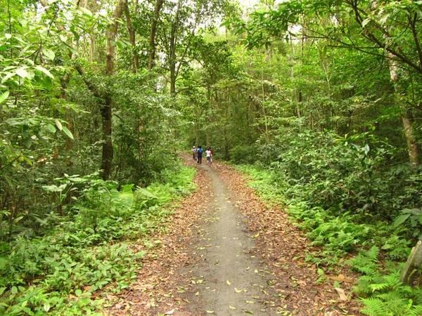 Trước khi trekking bạn phải trình báo ban quản lý VQG (xác nhận tên tuổi, nơi ở, số điện thoại liên hệ). Đây là khu dự trữ sinh quyển quý giá, địa hình đa dạng, hiểm trở nên việc trải nghiệm trong rừng cần được kiểm soát chặt chẽ.