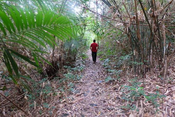 Để đến được Ao Ếch bạn phải đi qua những biển chỉ đường như: Dốc Ánh Rạng, Đỉnh Mây Bầu, Đỉnh Áng Phay...