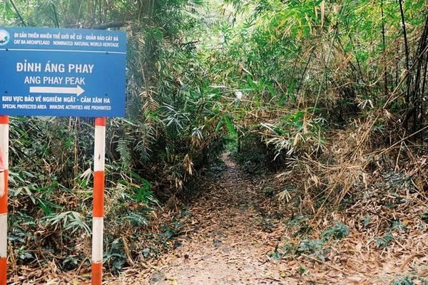 Vì khu vực trekking được ban quản lý VQG bảo vệ nghiêm ngặt nên du khách không sợ lạc đường. Có nhiều dấu vết được sơn trên vách đá, biển báo giúp bạn có thể dễ dàng đi xuyên núi, rừng.